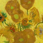 نقاشی گلهای آفتابگردان