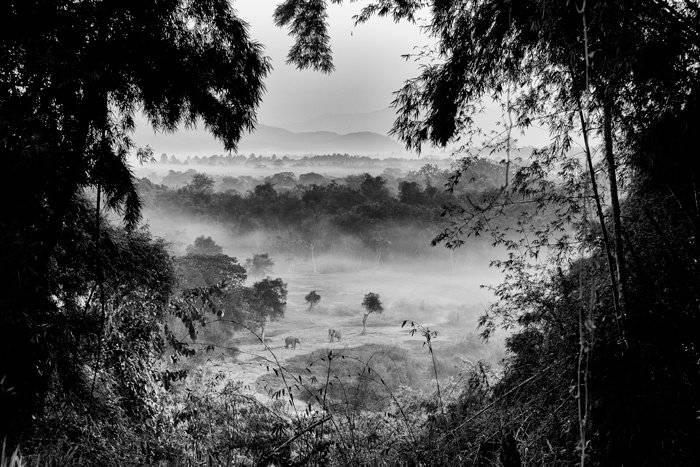 عکاسی منظره سیاه و سفید