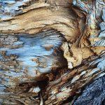 راهنمای عکاسی از بافت | 5 روش ایده آل