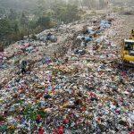 10 حقیقت آلودگی پلاستیکی : 3 اثر آلودگی پلاستیکی
