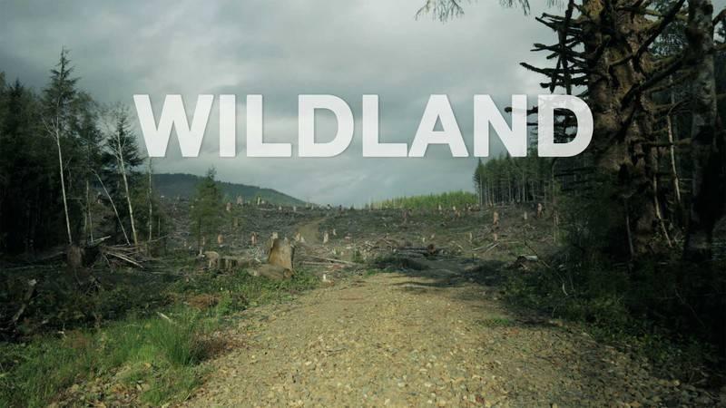 فیلم Wildland